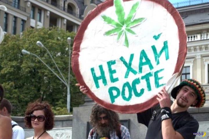 В Украине сделали первый шаг к легалайзу
