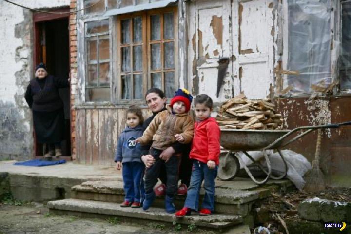 Кошатница против многодетной нищеты