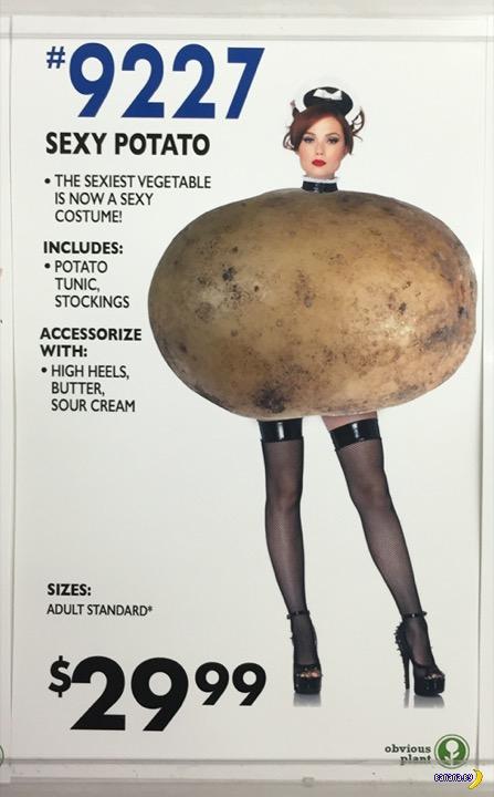 Беларусь не останется без картошки!