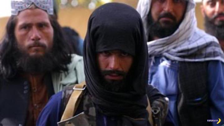 Талибы объявили неприкосновенность бороды