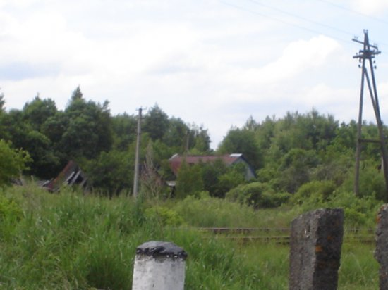Александровка (Чернобыльская зона)