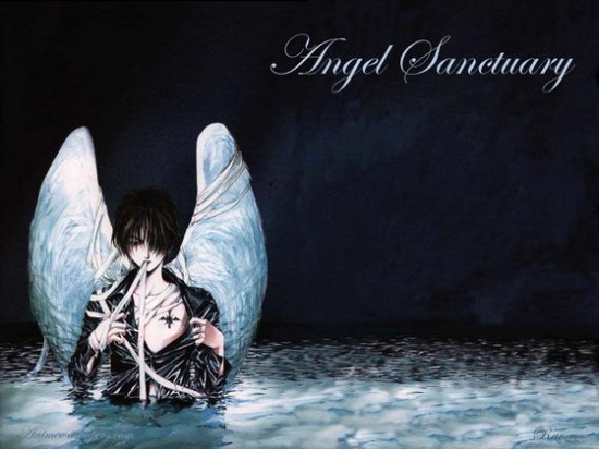 Angel sanctuary...