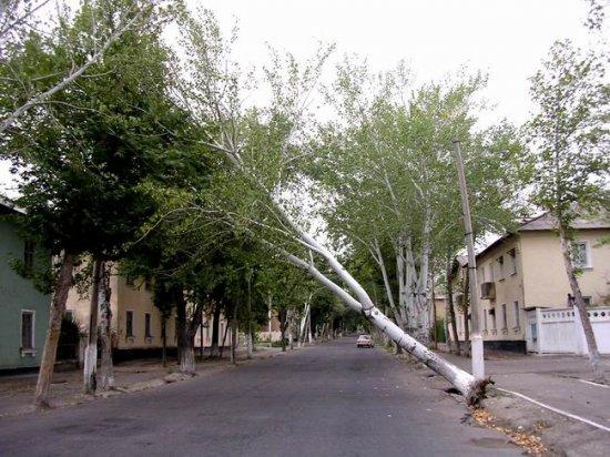 2007 год был насыщен аномальными погодными явлениями