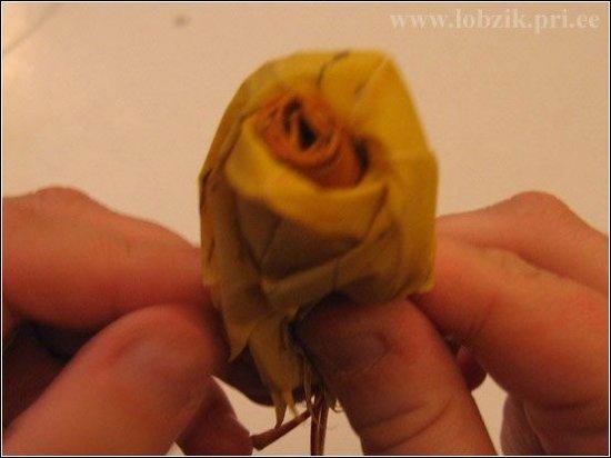 Необычный букет роз