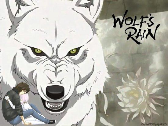 Обои Wolf's Rain