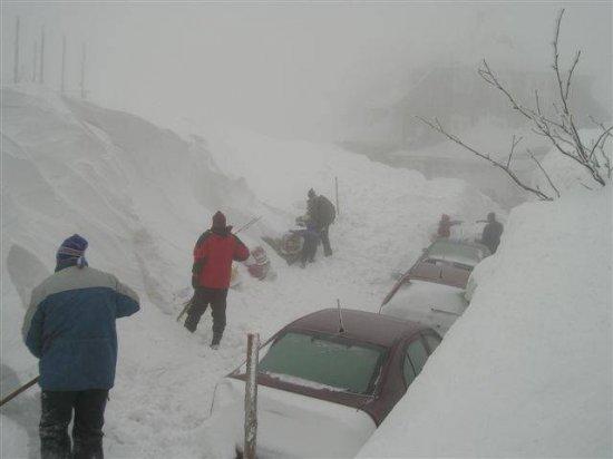 В снегу!