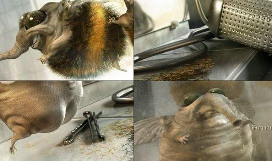 Лысая пчелка