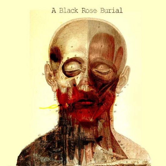 A BLACK ROSE BURIAL