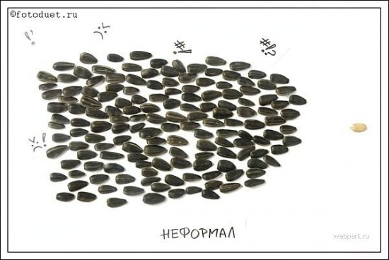 Семки