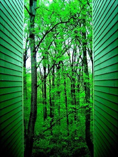 Магия зеленого