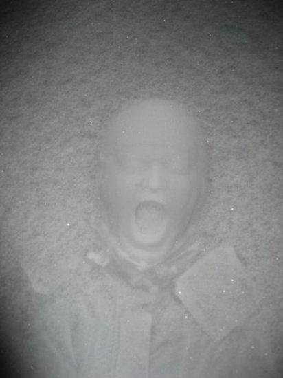 Лицом в снег