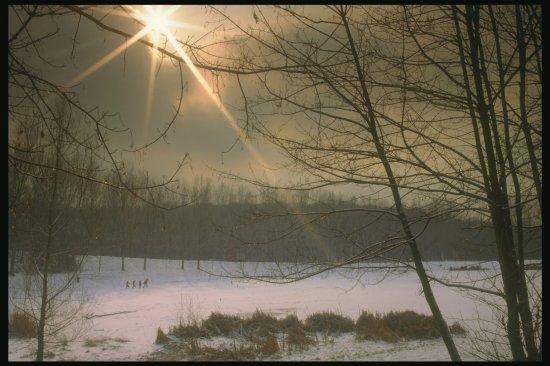 Зимняя краса