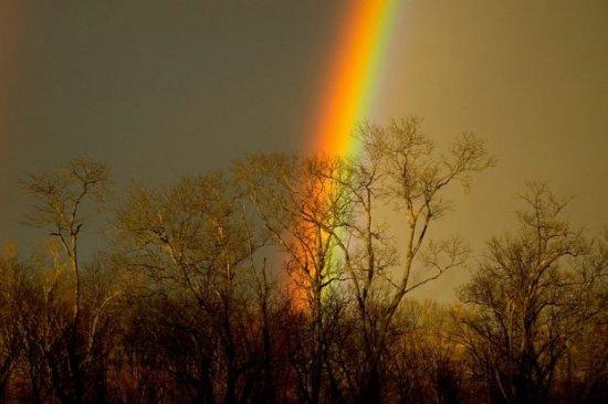 Про радугу