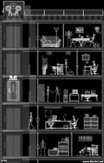 Рентгеновские фотки