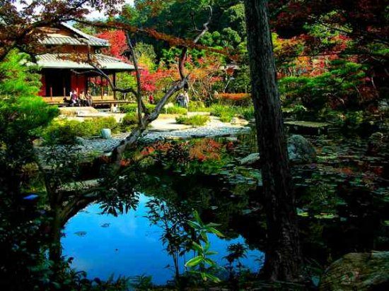 Японский Дзэн Сад
