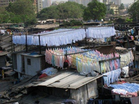 Общественные прачечные Индии