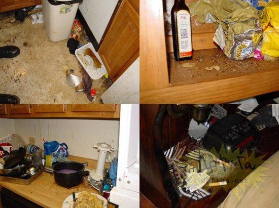 Удачно квартирку сдала ...