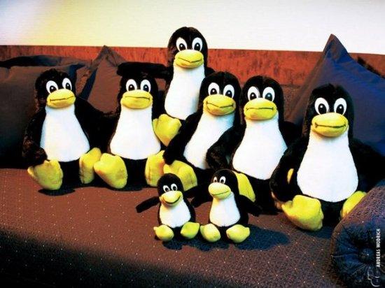 За что я ненавижу линукс