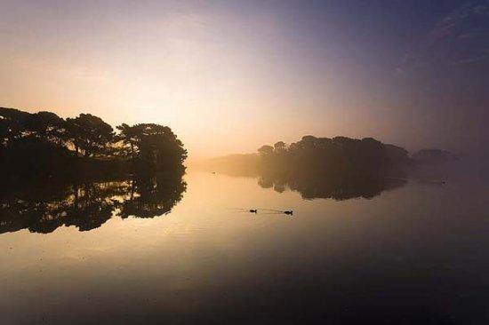 Живописный остров Гернси