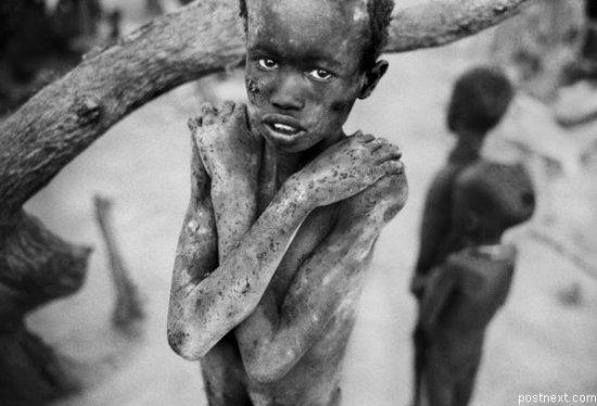 Фото из Африки