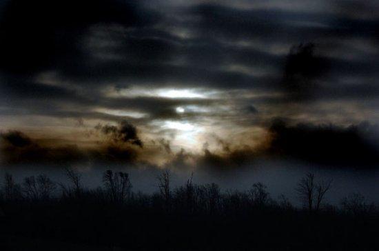 Ночная пора