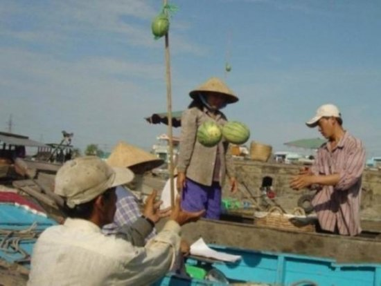 Инструкция по закупке арбуза