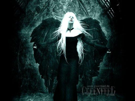 Greenfeed