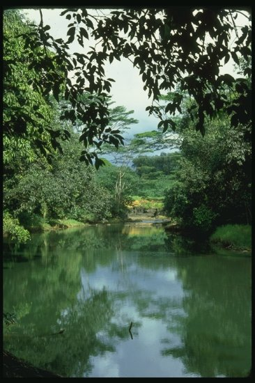 Пейзажи 2