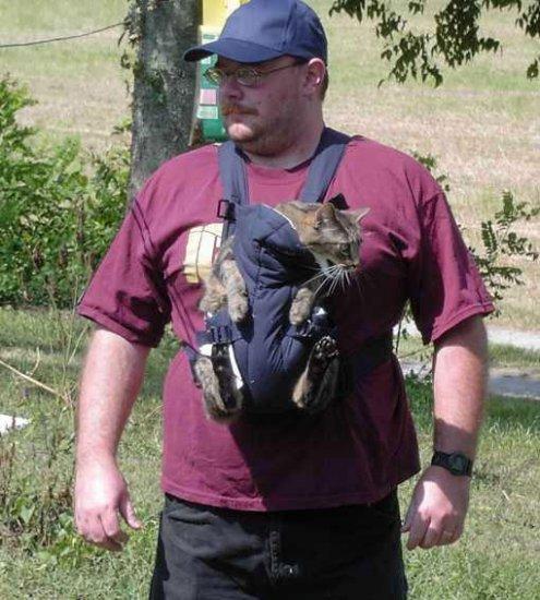 Как Вы думаете, кого этот мужчина несет в кенгурятнике?