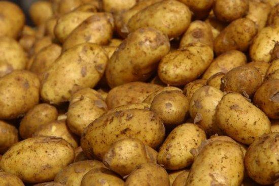 Каков был путь картофеля до стола?