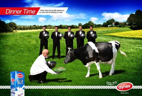 Реклама молока Aynes про нежность к коровам
