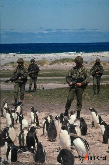 Это армия!