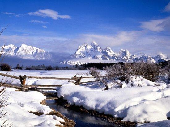 Зимняя сказка (1600x1200)