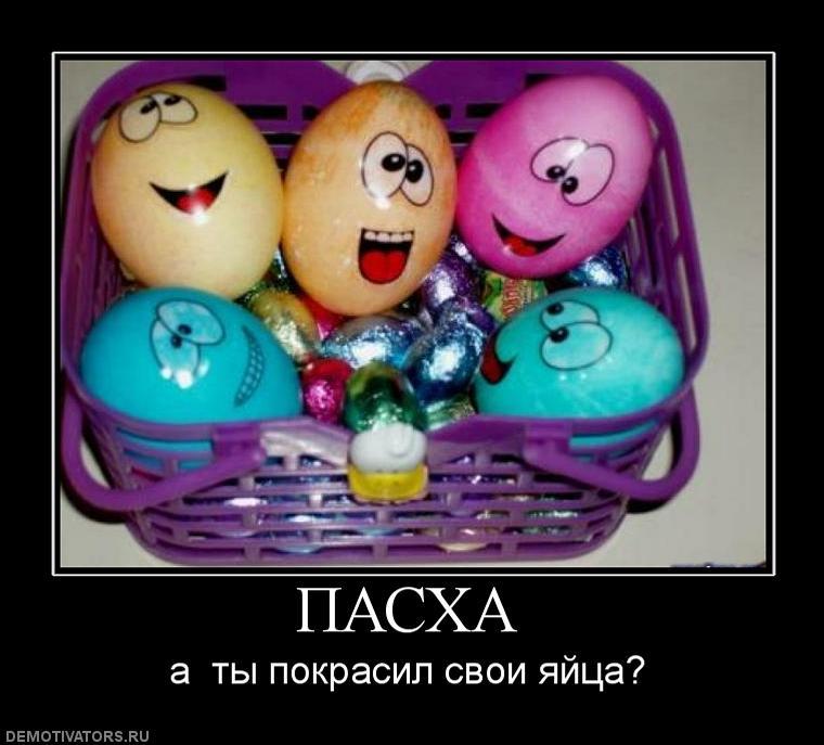 Все на яйца прикол